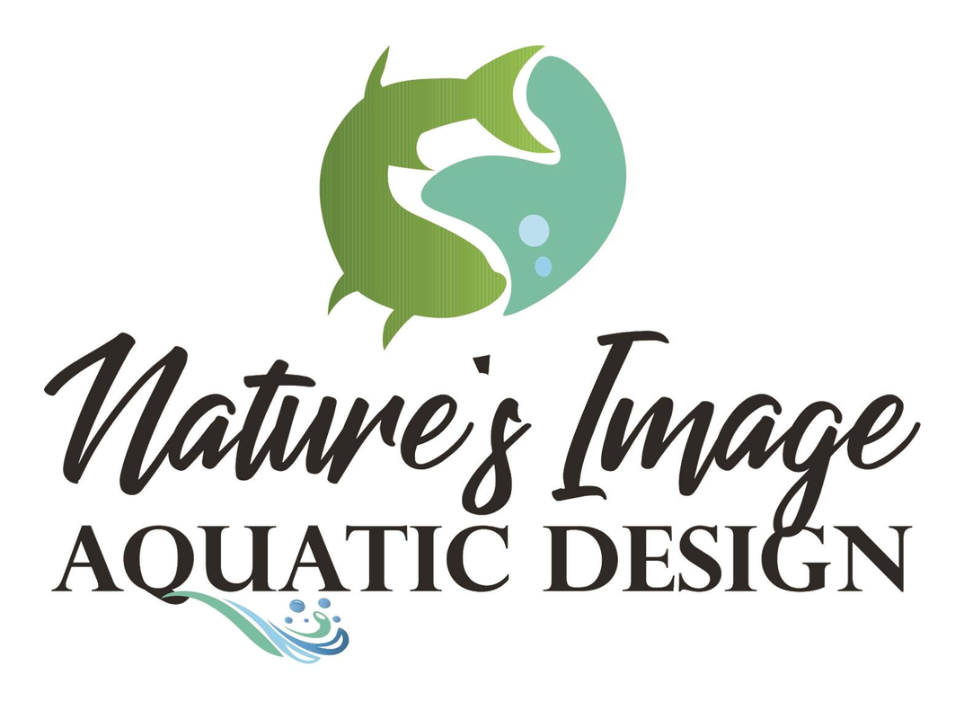 About Nature S Image Aquatic Design Llc Topeka Lawrence Kansas City Nature S Image Aquatic Design Llc